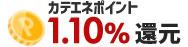 カテエネポイント1.10%還元